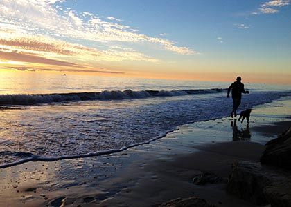 Man on Adelaide beach with dog at sunset. Port Road Vet servicing Croydon, Kilkenny, Woodville, St Clair and Port Adelaide