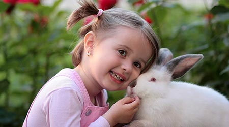 Girl with fluffy rabbit. Adelaide vet specialising in small pets