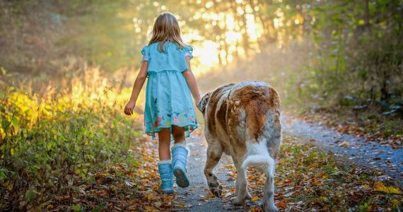 Dog safety for kids