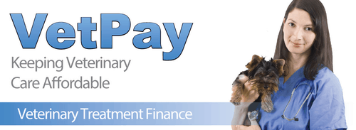 Vetpay - afterpay for vets adelaide